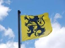 De Vlaamse leeuw